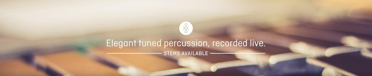 tuned_percussion